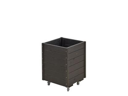 Plus rollbarer Pflanzkasten mit Spalier Fichte-Kiefer schwarz 48 x 48 x 66 cm